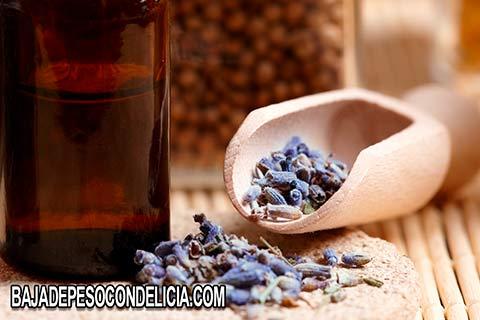 El aceite esencial de lavanda es ideal para los dolores musculares y cólicos menstruales