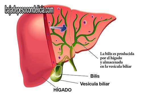 Los cálculos biliares es que se pueden detectar con rapidez y fiabilidad en un simple examen de ultrasonido